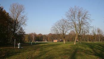 Avontuurlijk Bosspeelplek Eendrachtspark – Amsterdam