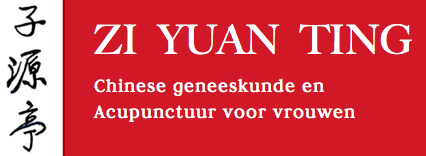 Zi Yuan Ting – Amsterdam