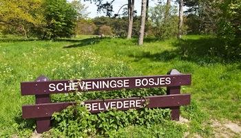 Scheveningse Bosjes – Den Haag