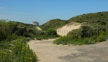 Westduinpark en Bosjes van Poot – Den Haag