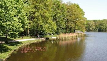 Het Haagse Bos – Den Haag