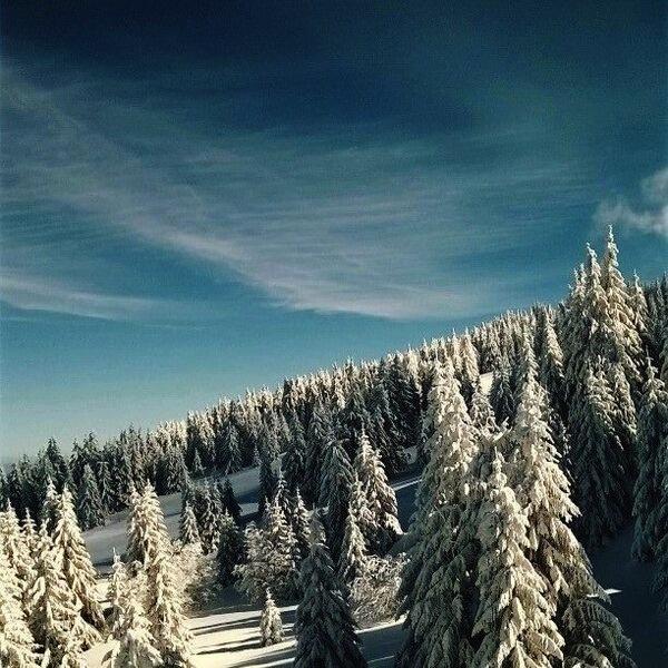 Voordeling met wintersport in Servie 3
