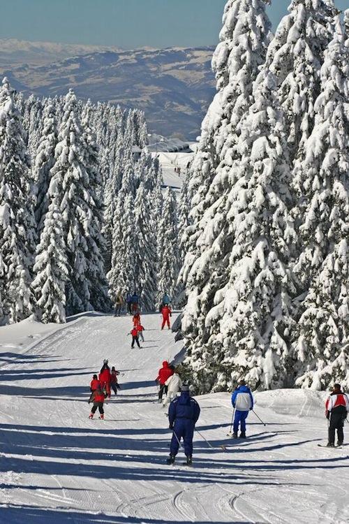 Voordeling met wintersport in Servie 6