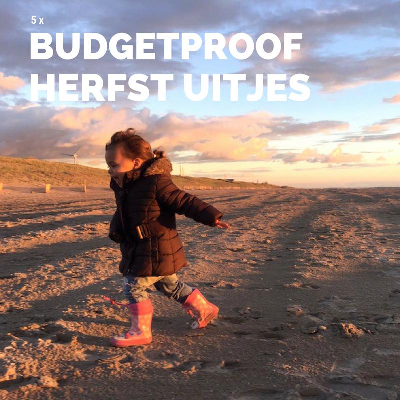budgetproof-herfstuitjes