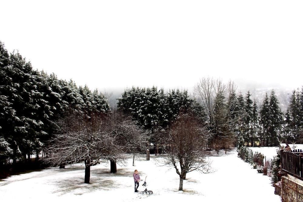 DE STOKKE WINTERKIT; LOOKING COOL IN THE SNOW