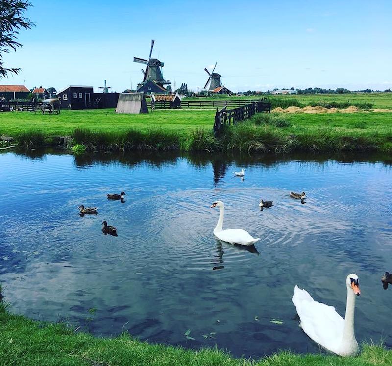 De Zaanse Schans | CITYMOM.nl 5
