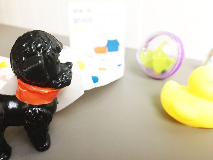 traktatie-kinderdagverblijf-creche-1-jaar-hond