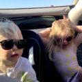 Polette Kids