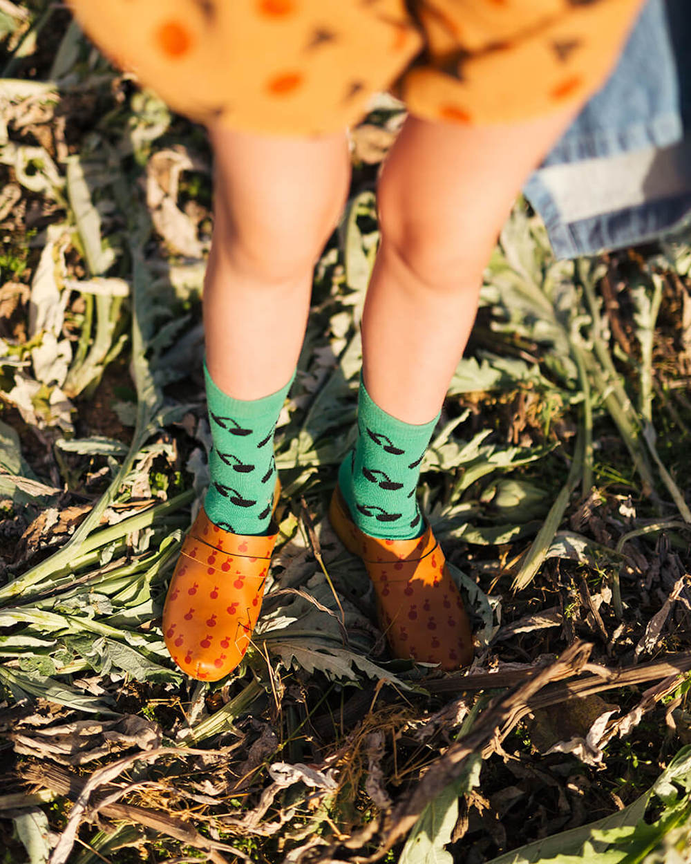 TUINIEREN MET KINDEREN. Wat te planten? Top 10 gewassen voor kinderen.